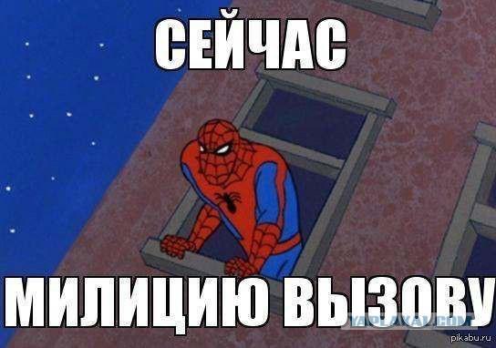 5278923.jpg